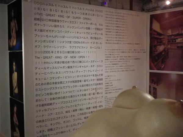 壁には妖しい言葉が写経のように書かれているのだが意味不明